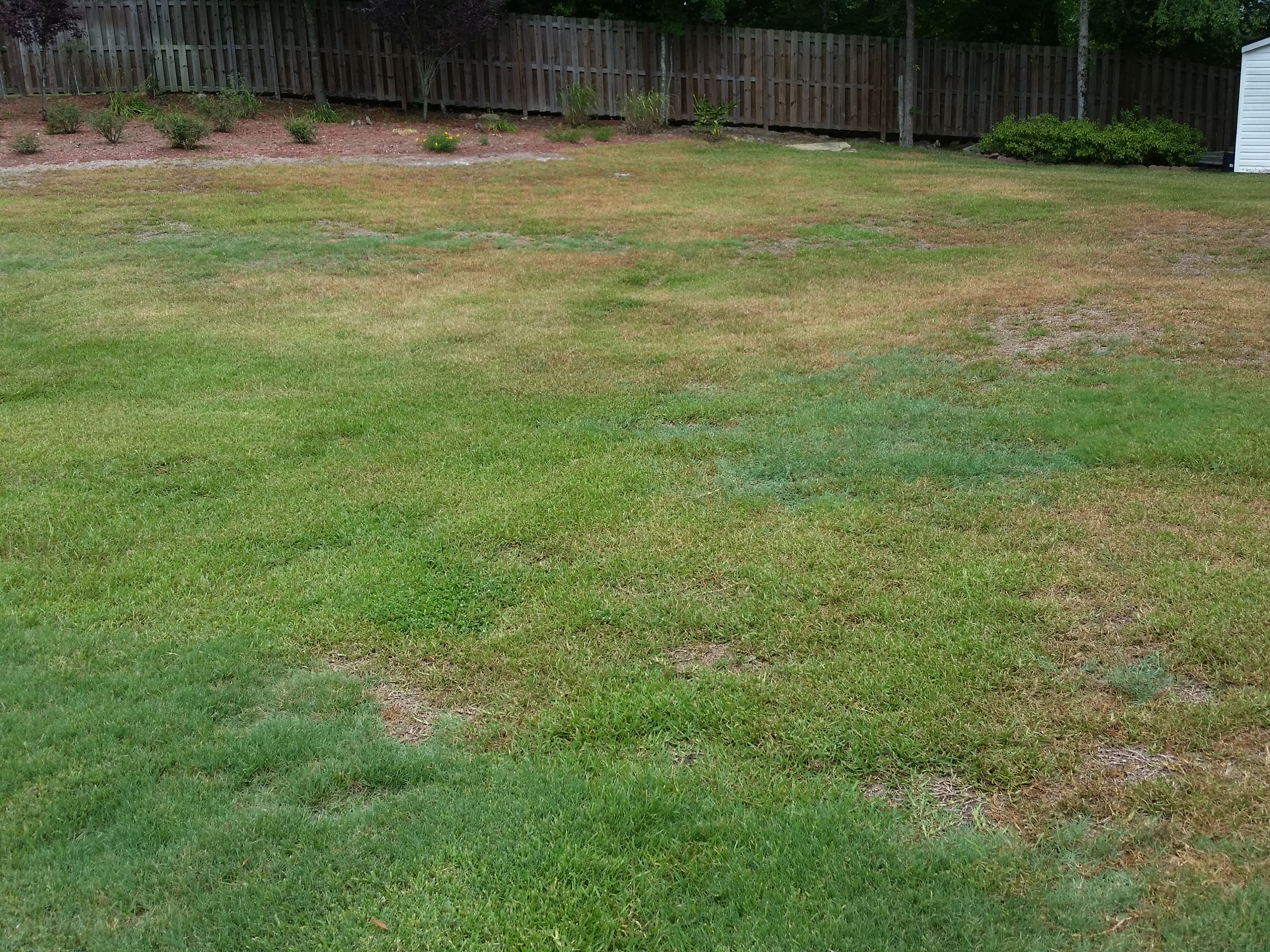 Lawn Service Knoxville Outdoor Designs Outdoor Designs