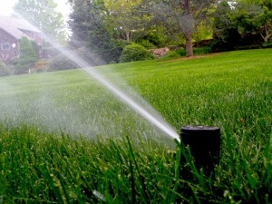 How Long Should I Water My Yard Outdoor Designs