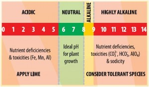 Adjust Soil pH can have a dramatic effect on growing conditions and plant health