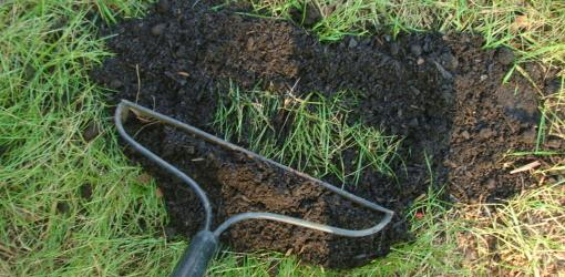 top-dressing-improve-soil-lawn-5