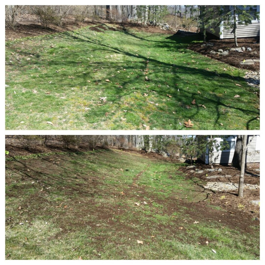 knoxville lawn care topdressing