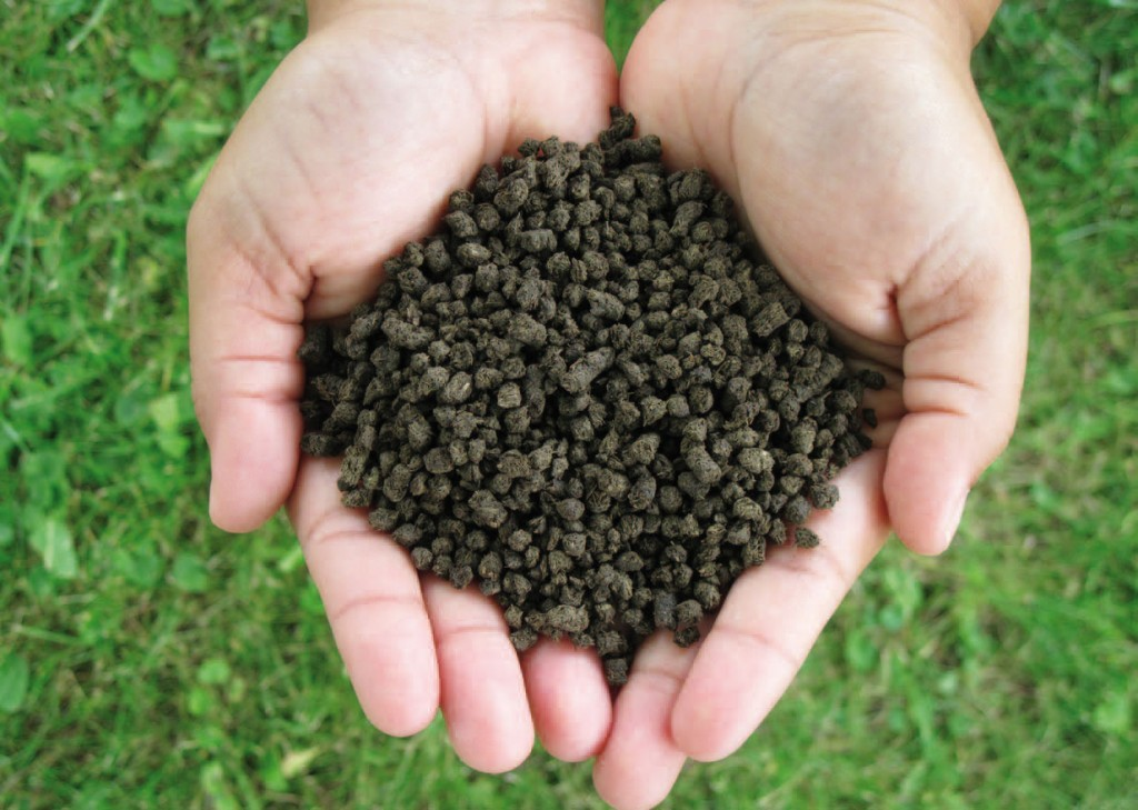 organically enhanced fertilizer