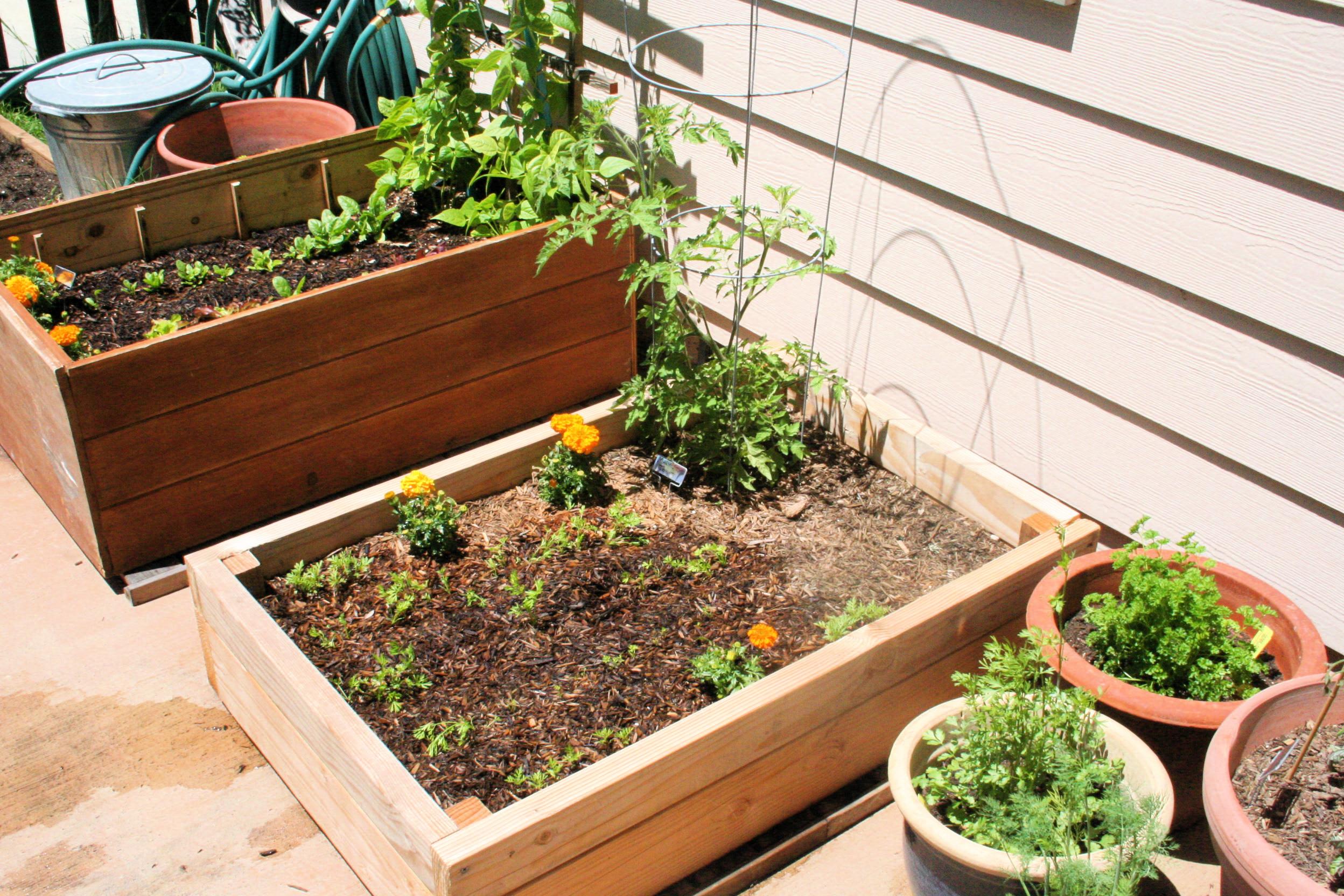 Organic Gardens | Outdoor Designs | Outdoor Designs